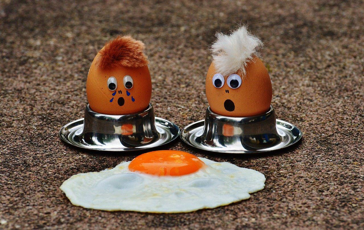 egg-1364869_1280