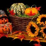 Como transicionar al otoño con energía